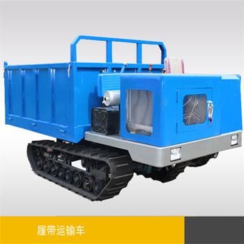 3噸(dun)座駕式履帶運輸車